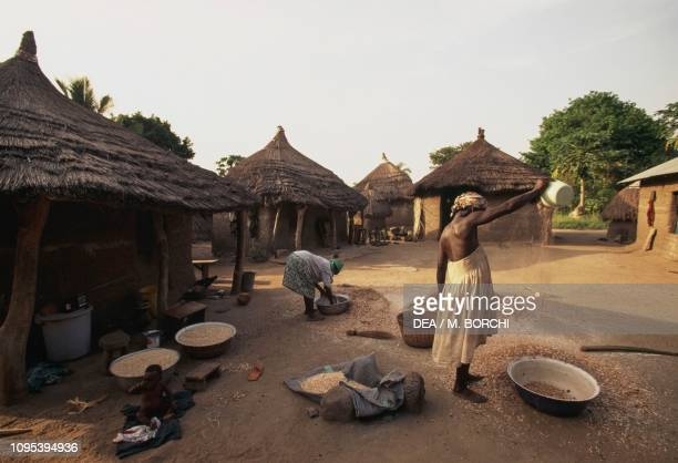 Women at work in front of their huts Akakope village Togo