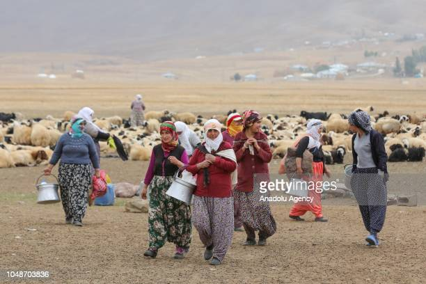 Women carry buckets after arriving to milk sheep at a highland following a long mule ride in Catak district of Turkey's eastern Van province on...