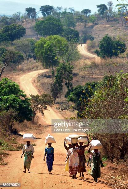 Women carry sacks of grain on their heads near Mphanda village in central Malawi The United Nations currently estimates 181 million people face...
