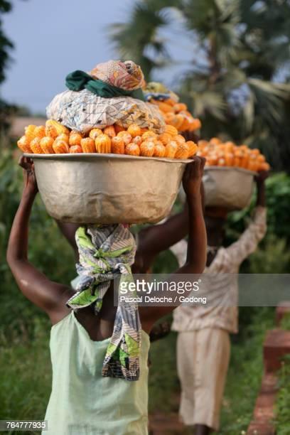 women carrying buckets with corn on their heads. togo. - togo fotografías e imágenes de stock