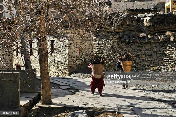 Women carrying firewood into Marpha village in the Annapurna region of Nepal