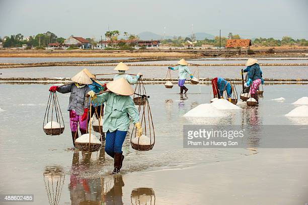 women carrying the basket full loaded with salt - south vietnam stock pictures, royalty-free photos & images