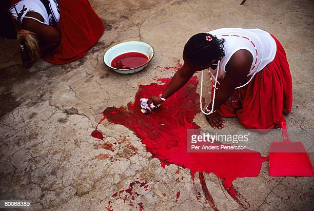 A women cleans the blood from a newly killed goat as she is graduating from a Sangoma ceremony on May 10 2005 in Soweto Johannesburg South Africa...