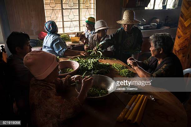 Women cutting and preparing vegetables