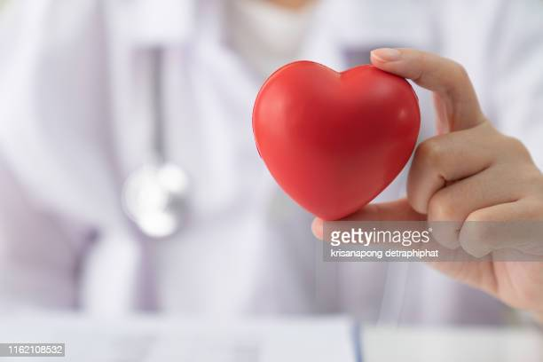 women doctor holding heart,heart disease,heart disease,heart disease center - artery stock pictures, royalty-free photos & images