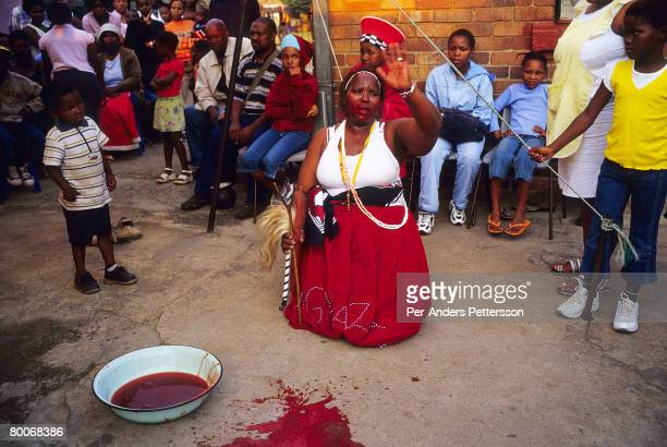 A women drinks the blood from a newly killed goat as she is graduating from a Sangoma ceremony on May 10 2005 in Soweto Johannesburg South Africa...