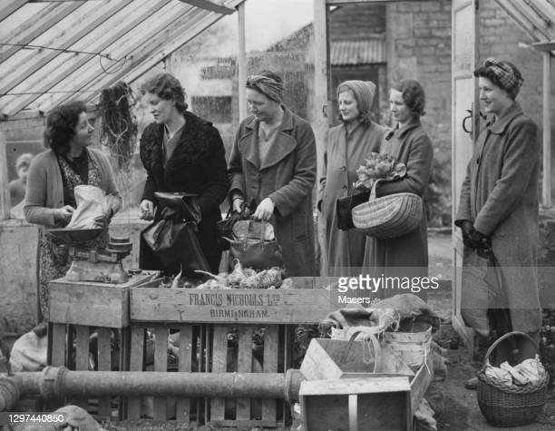 Women evactuated from the bombing in London queue in line to buy fresh vegetables from a box stall on 15th April 1941 at a farm shop in Bishops...