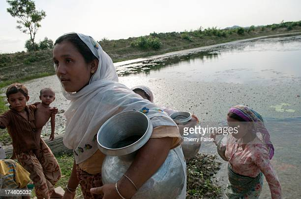 Women fetch water in a pond of Paungdok a Rohingya village with about 500 hourses and 5000 people
