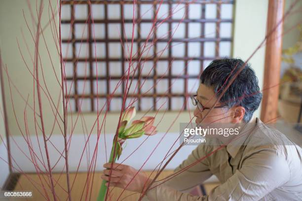 women focused on ikebana - ikebana stock pictures, royalty-free photos & images
