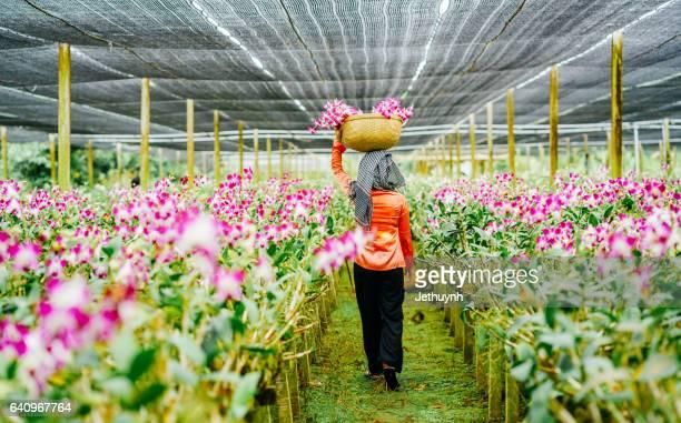 Women gather flowers in Orchid Garden