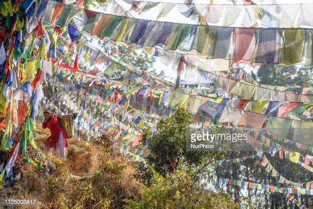Women go up the mountain surrounded by prayer flags to work in the Thrangu Tashi Yangtse Monastery Kavrepalanchok District Bagmati Zone Nepal in...
