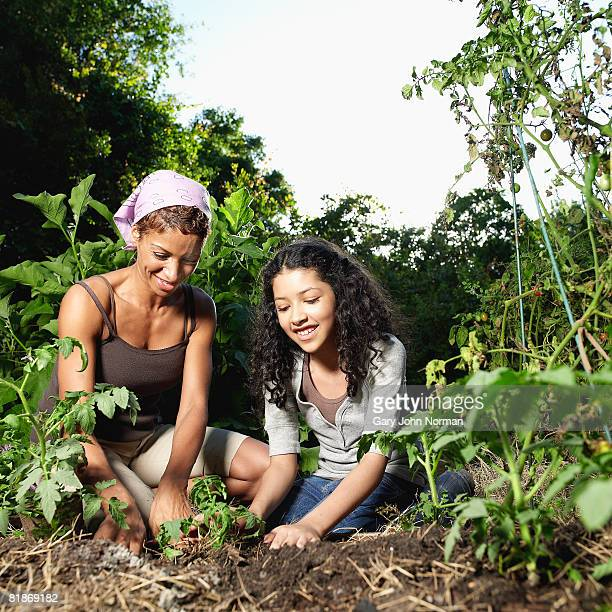 Women guides young mixed race girl through the process of plantiing