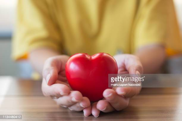 women hand holding heart, heart disease concept - organ donation stock photos and pictures