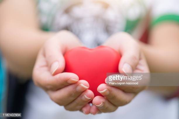 women hand holding heart, heart disease concept - responsibility stock pictures, royalty-free photos & images