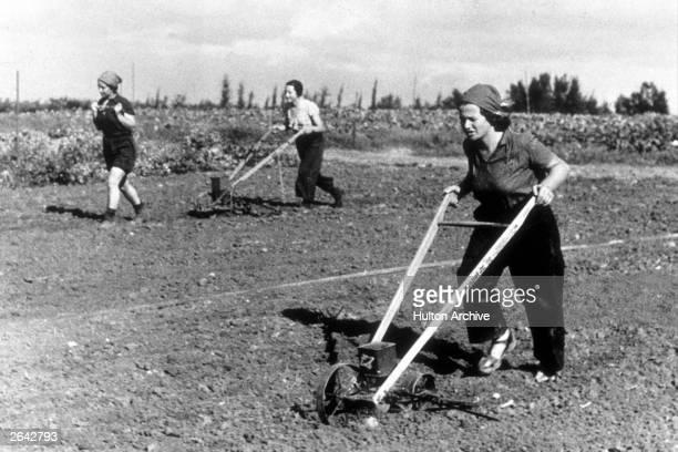 Women handplouging fields on a kibbutz in Israel