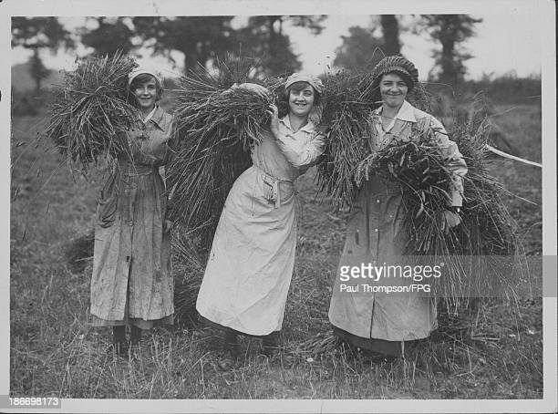Women helping with the harvest in Suffolk to aid the war effort during World War One Great Britain 19141919