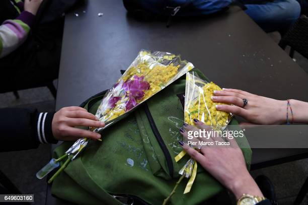 Women hold bunches of mimosa flowers during International Women's Day celebrations on March 8 2017 in Milan Italy Women in Italy traditionally...