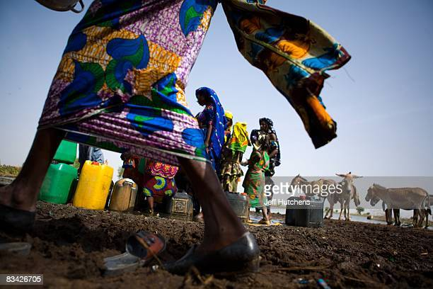 Women in colorful, flowing fabrics gather around a shared human and animal watering hole in central Africa where water is an incredibly valuable...