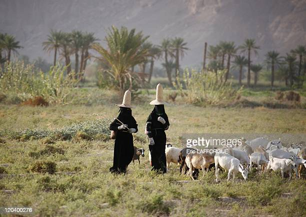 Women in Hadhramaut Yemen Hadramout women with full black dresses gloves and high hats The high hats are supposed to bring fresh ait to the head