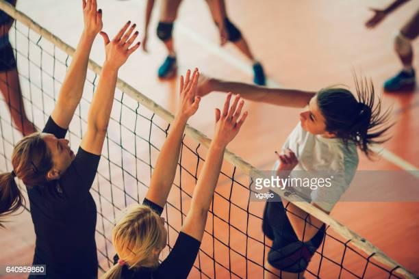 frauen im sport - volleyball - damen volleyball stock-fotos und bilder