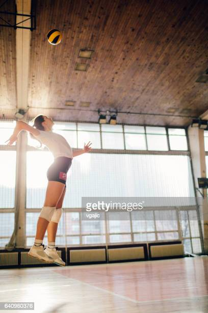 women in sport - volleyball - womens volleyball stock photos and pictures