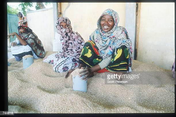 Women load grain at a food distribution site June 20 1993 in Mogadishu Somalia An estimated 350000 Somalis died due to war famine and disease over...