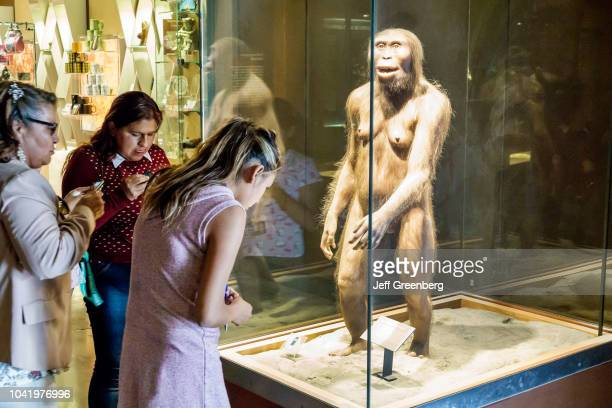 Women looking at Australopithecus Afarensis Lucy reconstruction at the National Museum of Anthropology