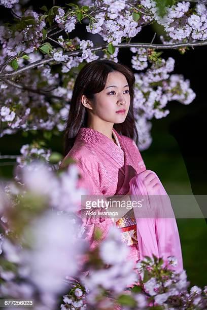 women of cherry blossom and kimono - akio iwanaga ストックフォトと画像