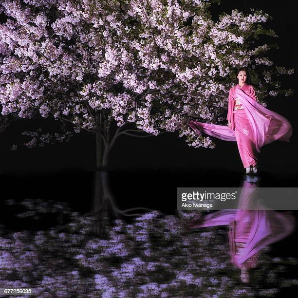 Women of cherry blossom and kimono
