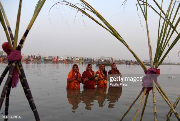 Women offer prayer at Sangam on the occasion of Chhath Puja Celebration in Allahabad