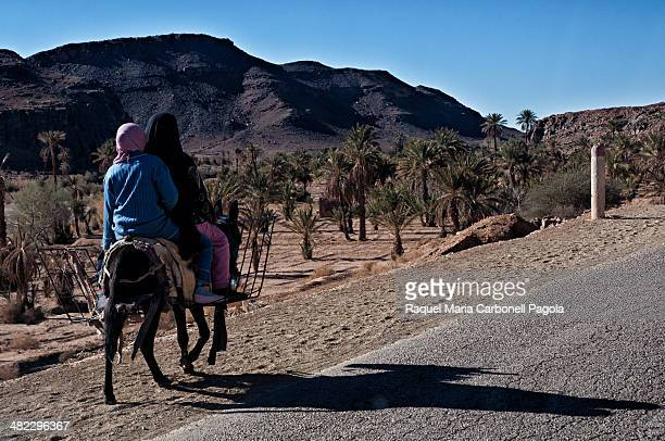 Women on a donkey walking on the road
