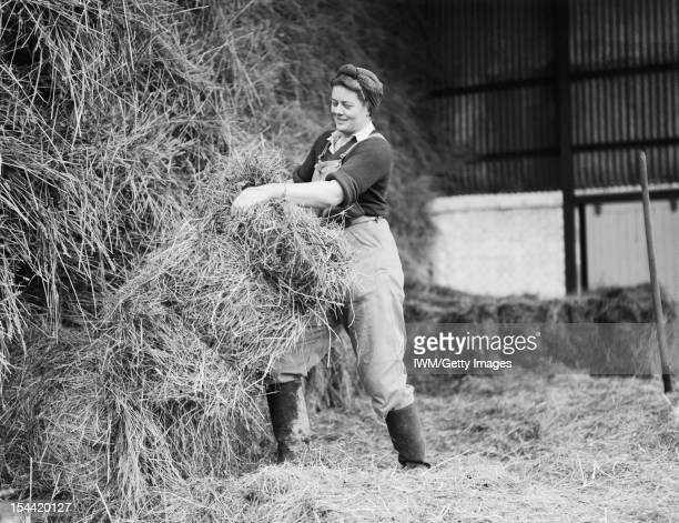 Women On The Home Front 1939 1945 The Women's Land Army The skilled and heavy work of haystacking is tackled by members of the Women's Land Army...