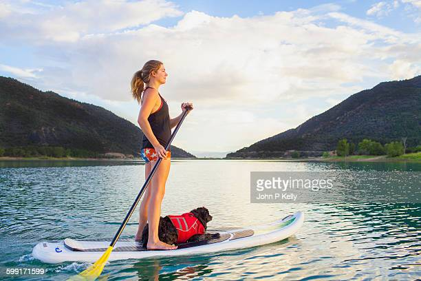 women paddleboarding with dog - paddleboard stock photos and pictures