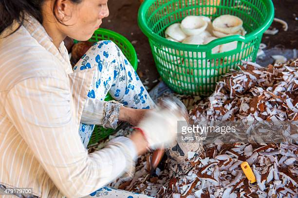 A women peals the skin off fresh coconuts which will be later crushed for milk or oil at a coconut factory outside of Ben Tre in the Mekong Delta in...