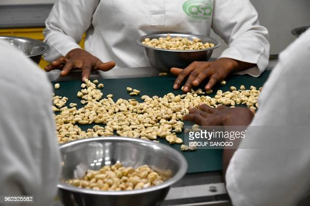 Women perform the peeling of cashew nuts at a cashew nuts processing factory in the central Ivorian city of Bouake on May 24, 2018.