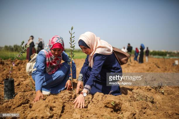 Women plant saplings at the Gaza border within a protest against the Israeli blockade on March 20 2018 in Gaza City Gaza
