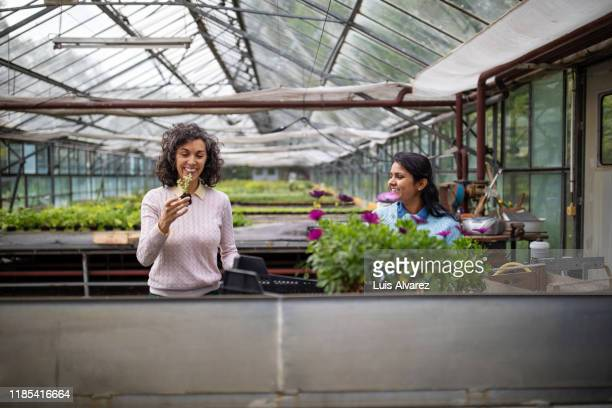 women planting at garden center - 検査業務 開始の地 ストックフォトと画像