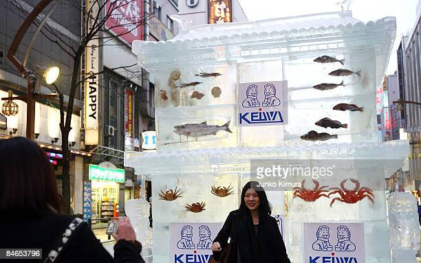 A women poses as she has her photo taken by an ice sculptures with real fish frozen inside during the 60th Sapporo Snow Festival on February 5 2009...