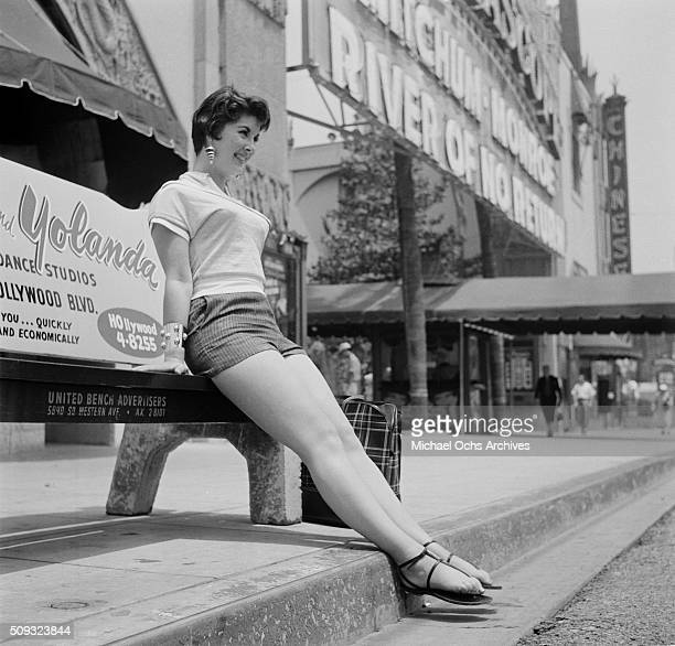 A women poses on a bus bench on Hollywood Boulevard in HollywoodCalifornia n