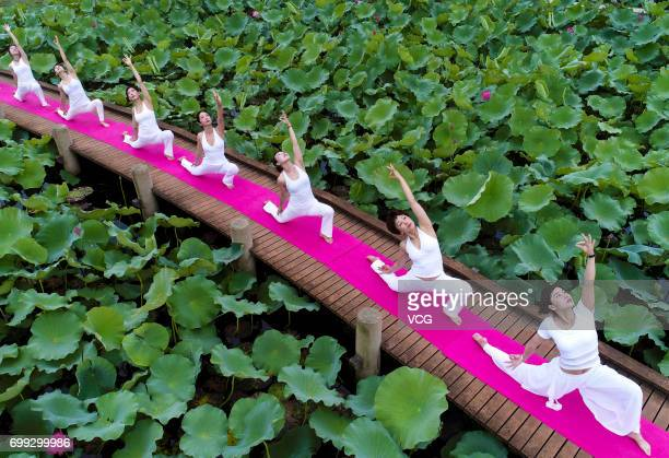 Women practice yoga at a lotus pond in Tiande Lake on the International Yoga Day on June 21 2017 in Taizhou Jiangsu Province of China