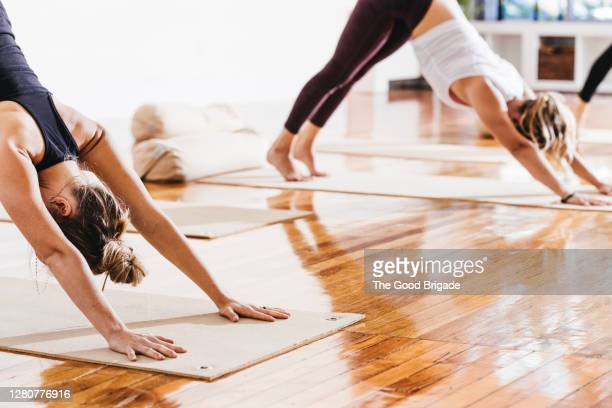 women practicing downward facing dog position in yoga class - good posture stock pictures, royalty-free photos & images