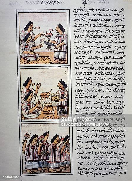 Women preparing a feast page from Book IV of the Florentine Codex bilingual version in Spanish and Nahuatl General History of the Things of New Spain...