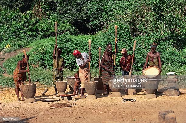 Women preparing millet flour in a village in the Boundiali area Ivory Coast