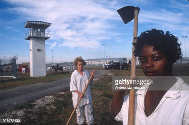 Women prisoners at the Mountainview Unit a Texas state prison for women work the fields of the prison farm in hoe squads on October 1 1996 outside of...