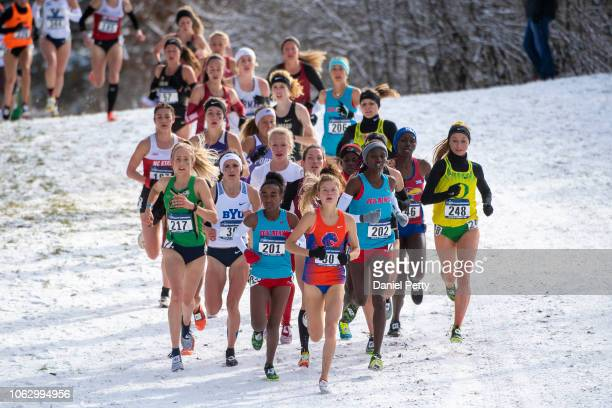 Women race in the NCAA cross country championships at Thomas Zimmer Championship Course on November 17 in Verona Wisconsin