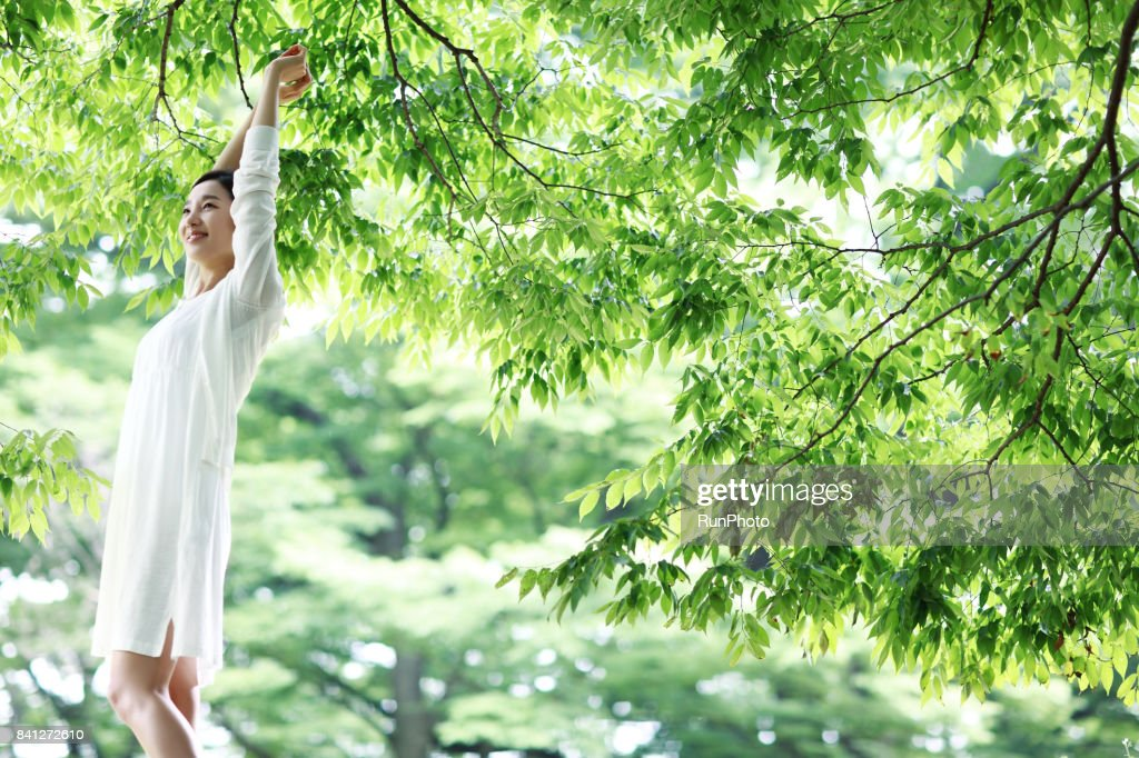Women raising their hands in the park : ストックフォト