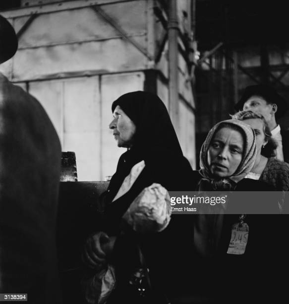 Women refugees queuing at Ellis Island New York before beginning their new life in America 1951 They have recently arrived on board the USS General R...