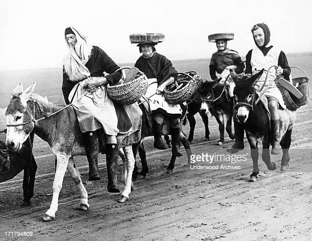 Women riding their donkeys on the Llanrhidian sands in South Wales in search of cockles left by the ebbing tide Wales October 17 1947