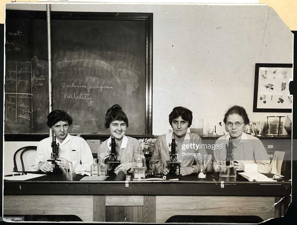 Women Seated At Microscopes In Lab : News Photo