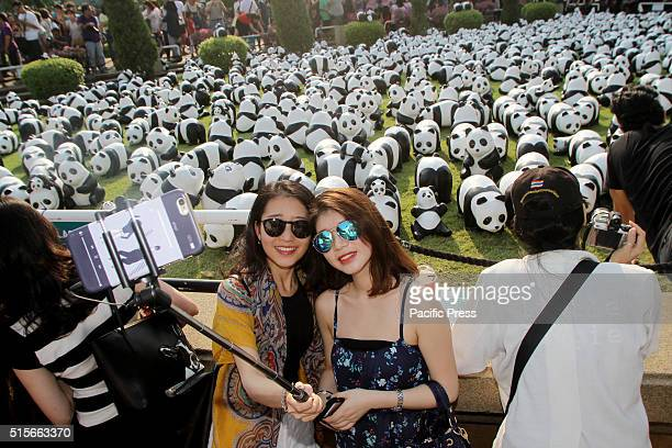Women selfie photo backside pandas during the 1600 Pandas exhibition by French artist Paulo Grangeon displayed at Santi Chai Prakarn park in Bangkok...